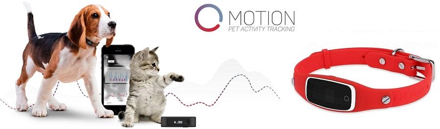 GPS трекер для домашних животных