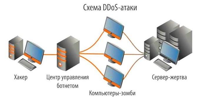Что такое DDoS атака? Виды и особенности