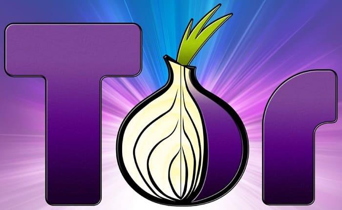 Tor браузер - все что нужно знать о луковой сети