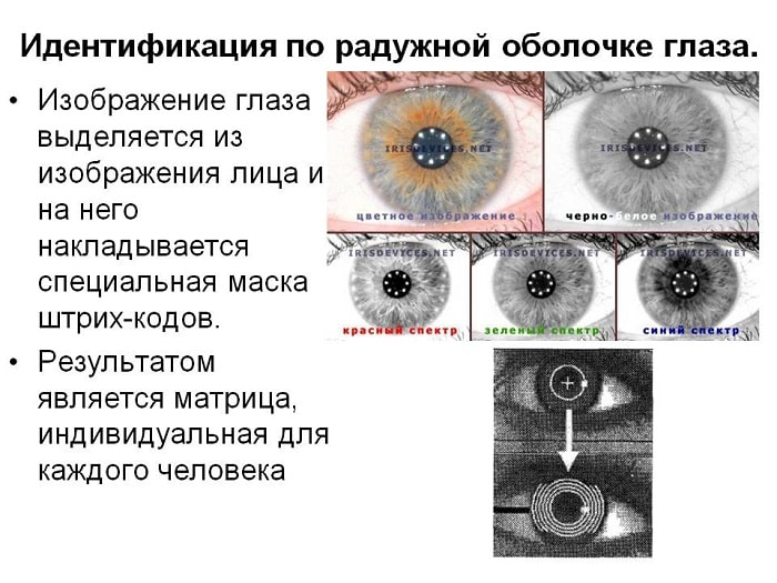Распознавание радужной оболочки глаз