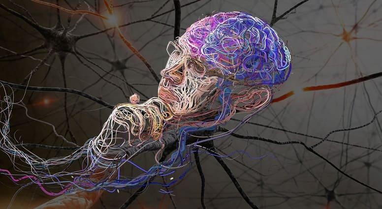 Как работает нейронная сеть и для чего она нужна?