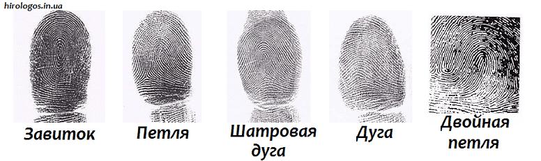 Виды отпечатков пальцев