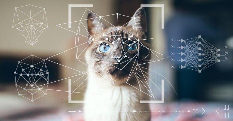 Что такое распознавание изображений и как ИИ помогает в их распознании?
